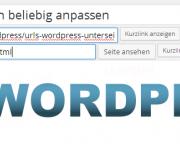 Wordpress Plugin Custom Permalinks